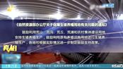 沂南:荒山养猪遭遇备案难 既不违法也不是禁养区 备案为何下不来