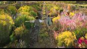 科林·费斯主演经典名著改编大电影《秘密花园》首曝预告片!