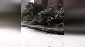 【安徽】阜阳下起大雪整个路面都被覆盖 小伙伴可以堆雪人了
