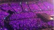 在心里的某个地方总会有一片紫色的长春花海,函数的十周年快乐,我们来日可期