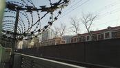 戚灵芸又下海空车外放+第一次在北京见到1000系的夏珂馨 DF11G-0011-0012回送0Z51交会HXD3C-1002牵引的K396次乌海西——北京列车