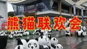 四川省达州市大竹县金山国际街头惊现好多的大熊猫,熊猫嘉年华?
