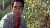 北国红豆:姑娘领不了工作证,小伙说:不信回家还领不了结婚证!