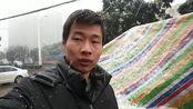湖北省枣阳市第一场鹅毛大雪2020年1月8日中午12:30分降临!
