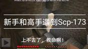 [我的世界]当菜鸟和高手遇到了Scp-173反应会怎么样?