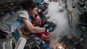 宇航员克里斯蒂娜·科赫的空间站科学研究日记