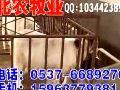 山东滨州波尔山羊价格@滨州波尔山羊的价格