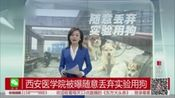 西安医学院被曝随意丢弃实验用狗