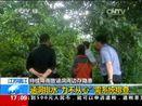[新闻直播间]江苏镇江:持续降雨致涵洞周边存隐患