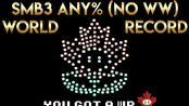 【超级马里奥3】Any% (No Wrong Warp)最新通关世界纪录10分44秒