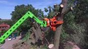 南方台风总有大树刮房子, 怎么不用这神器? 有它在清洁工太省力!