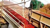 葛根淀粉加工设备,溢流式红薯制粉机,集粉碎与过滤为一体