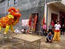 广西玉林市大平山镇旺村局醒狮