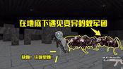 河马哥疯狂青蛙历险记:通过密道到地下迷宫,遇见变异的蚂蚁军团