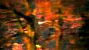 德国目击,www.gowulong.com, 到的发光体(流畅)_480x320_512.00K_mpeg4