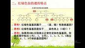 高中生物人教版必修二第一章孟德尔的遗传定律(一)(二)基因在染色体上伴性遗传