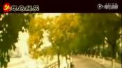 短片《www.newsodu.org sodu