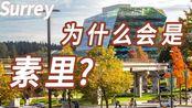 移民加拿大,为什么喜欢在素里买房?(粤语国语讲解)溫哥華睇樓:实地去看看One Central in Surrey素里最高的住宅公寓大厦