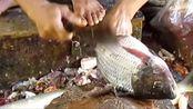 超会吃,印度小哥杀鱼剃掉鱼皮,几刀下去鱼皮刮的超干净