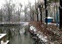 双鸭山市雪景