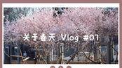 Vlog2.0 春天里的周末碎片