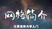 「自制课程」计算流体力学(CFD)第十六讲 网格简介 天津大学刘建新