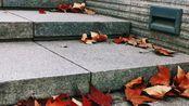 秋日掠影- 南京工程学院