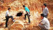 """江西省一古墓发现一条""""龙"""",专家看后傻眼了,立即申请武警保护"""