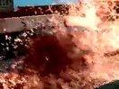 LOL难道这就是小鲨鱼费慈大招的原型!www.55sos.com?