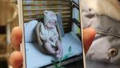 女婴推拿后死亡,家属质疑卫生中心诊断,当地卫生局介入调查