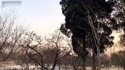 在南京看了中山陵、美龄宫、明孝陵和鼓楼,这个寒假真的很充实啊