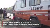 广东省应急管理:肇庆四会森林火灾已被扑灭,无人员伤亡