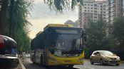 【POV·Lamy#38】【盛夏掠影】哈尔滨公交·5路POV(红旗小区→远大公交首末站)