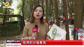 2019年湖南省定向运动大赛(望城站)启动