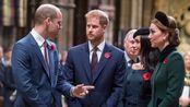 """威廉""""霸凌""""导致不和,哈里夫妇被迫出走?英国王子罕见联合发声"""