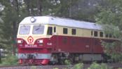 【暑运】DF4D 0339 4364次(集安-通化)通过梅集线241公里 2019.08.04