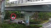 团伙从深港连通大桥扔包裹走私燕窝:案值50万元