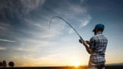达瓦steez 贴膜教程 淘宝店:佳曼路亚飞蝇工作室 阿曼qd视频-生活-高清完整正版视频在线观看-优酷