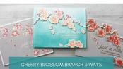 【卡片】一款印章制作三款中国风卡片教程|Cherry Blossom Branch 3 Ways (Mama Elephant)