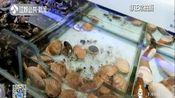 盒马鲜生水产品被检出抗生素:黄金贝含氯霉素 南京门店已下架