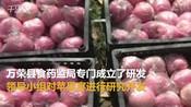 【山西】运城市万荣县推出苹果宴-山西快讯-山西快讯