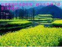 视频: zhoupeng910_115638373_175976汉中之旅