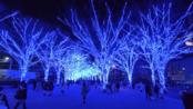 【云旅游】- 涩谷的圣诞节蓝色灯饰(正片8:49开始)