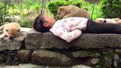 时间都去哪了,好想回到无忧无虑的童年,与猫狗相伴,天真无邪!