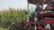 机器是很给力,但农民的收入支付给高科技的费用后,还能剩多少