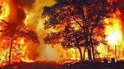 美国阿拉斯加发生山火 持续肆掠暂无伤亡