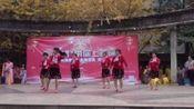 鹿江公园舞蹈队《九妹》优生活+带你上春晚全国海选展演樟树站 2019年12月16日