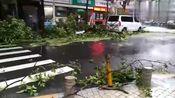 """实拍丨深圳福田区新洲村被台风""""山竹""""刮成这样了"""