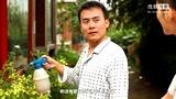 《刘大请客》小区电工刘大为何请人吃饭?