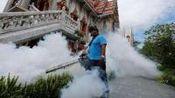 泰国登革热已致69人死亡 首都曼谷疫情严重
